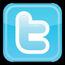 Twitter-icon-vector