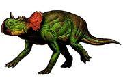 Avaceratops