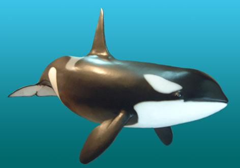 File:Male-orca-sculpture4.jpg