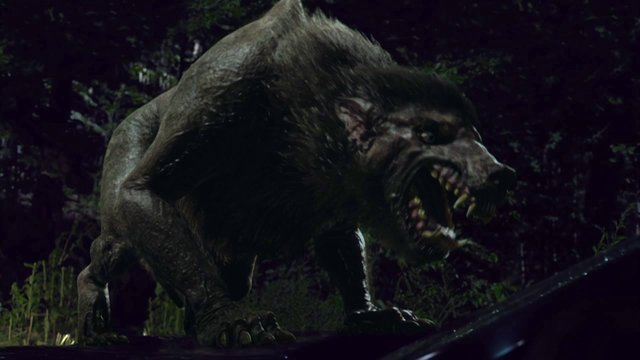 Werewolf (Syfy) | Being Human Wiki | FANDOM powered by Wikia