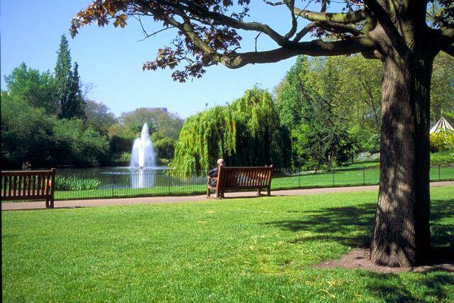File:31 06 6---St-James-s-Park--London web.jpg