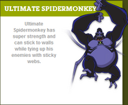 Spiderapeprofile