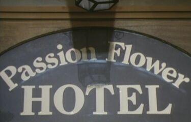 00passion flower