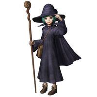 Image result for schierke staff