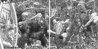 Episode 332 (Manga)