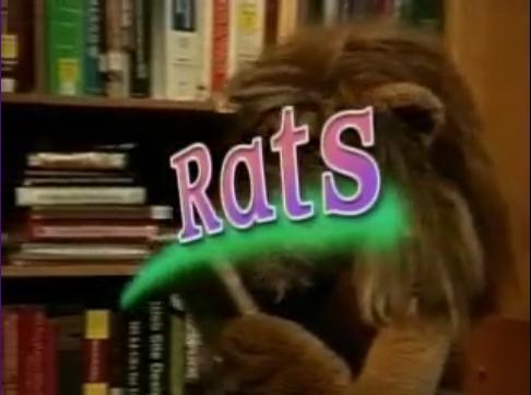 File:Rats.png