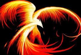 Plik:Phoenix.jpg