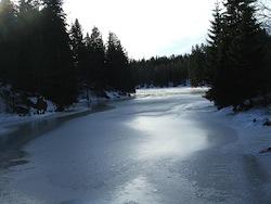 Icy Lake Arena
