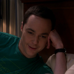 Sheldon talking to Amy in bed on Skype.