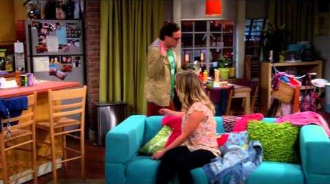 The Big Bang Theory - Penny and Leonard's Proposal S07E23 HD