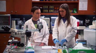 Sheldon and Amy move on to other work