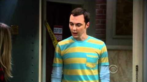 The Big Bang Theory - Season 5 Episode 2