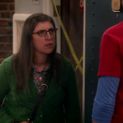 Amy is mad at Sheldon's Fun with Flags episode.