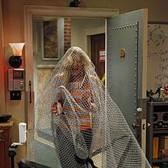 Penny is trapped in the apartment security net.
