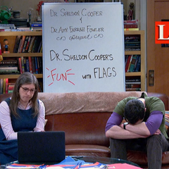 Sheldon wants to talk flags, not people's love lives.