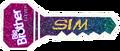 SimBB11Key
