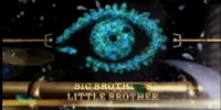 Big Brother's Little Brother