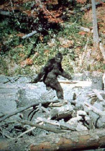 File:Bigfoot main image.jpg
