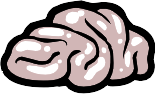 Plik:Brain.png