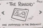 The Polaroid