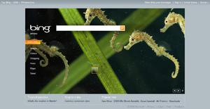 Bing screen