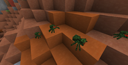 Jungle spider 1.6.4