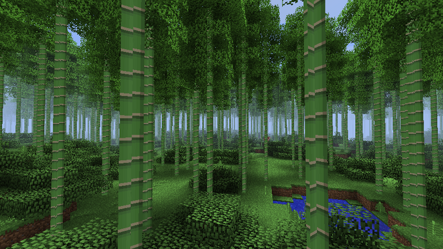 File:Bambooforest.png