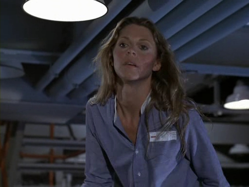 File:The.Bionic.Woman.S03E04.DVDrip.XviD-SAiNTS.avi 002492840.jpg
