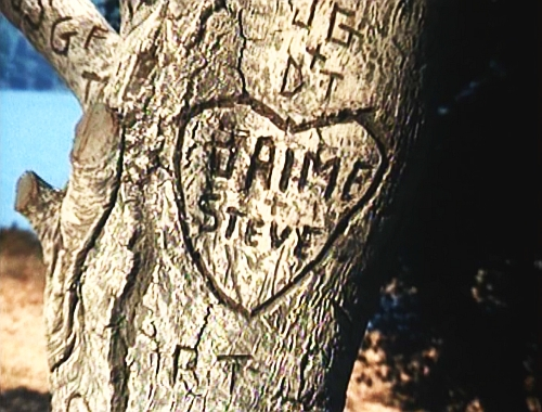 File:The Return of the Bionic Woman - Heart of Jaime and Steve on a tree.jpg