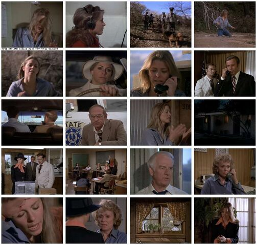 File:Th-The.Bionic.Woman.S02E16.Deadly.Ringer.Part.2.DVDrip.XviD-SAiNTS.jpg