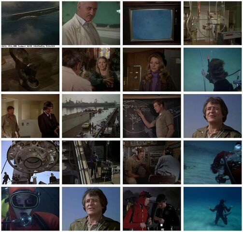 File:Th-The.Bionic.Woman.S03E17.DVDrip.XviD-SAiNTS.jpg