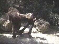 Jaime vs bigfoot