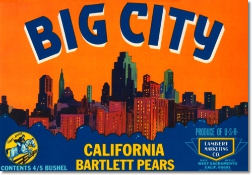 File:Antique-vintage-art-fruit-crate-label-023-big-city-bartlett-pears.jpg
