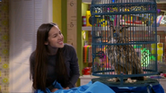 Paige & Hawk