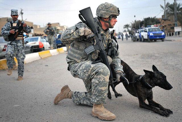 File:American Military Police.jpg