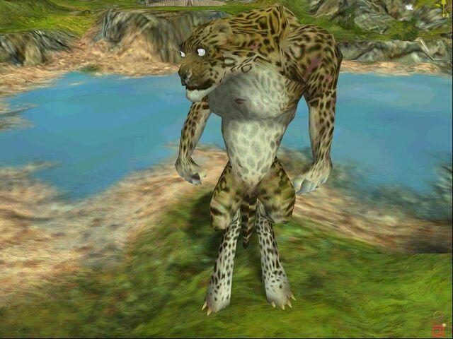File:Leopard.jpeg