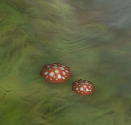 File:Poison mushroom.jpg