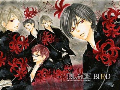 File:BlackbirdbyKanokoSakurakouji-1-.jpg