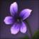 Lunar Twilight Flower