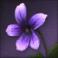 Lunar Twilight Flower.png