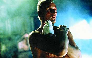 File:Blade-runner-roy.jpg