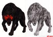 Black wolf by akreon-d69qzpm