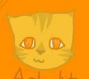 Amberkit