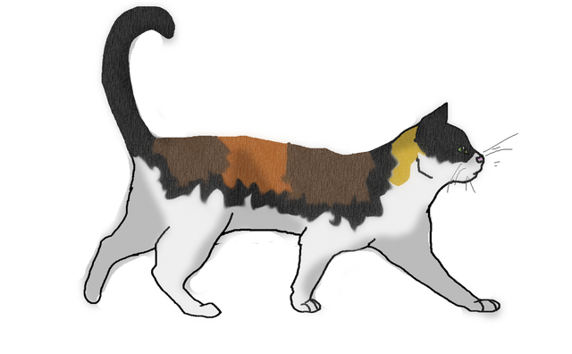 File:Leafpaw.png