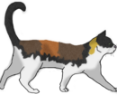 Leafpaw (2)