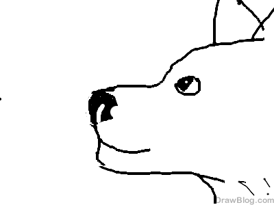 File:Rainy's Wolf.png