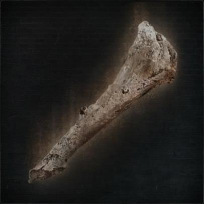 File:Old Hunter Bone.png