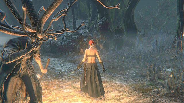 File:Bloodborne™ 20150522072255 - 1.jpg
