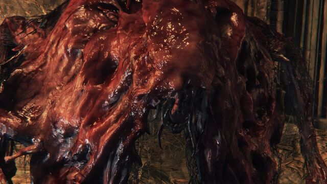 File:Bloodborne™ 20151021183637.jpg