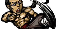 Kung Fu Monk +
